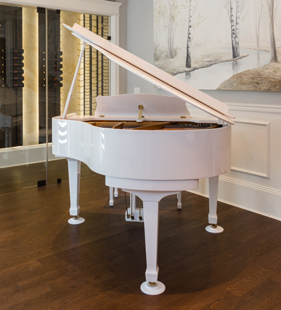 Grand piano in a beautiful entertainment room.